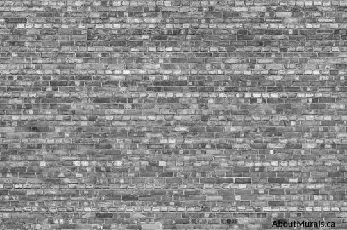Old Brick Wall Mural (Black & White)