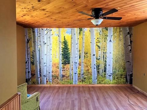 Aspen Forest wall mural trimmed to fit a wall in a rustic, wooden cottage