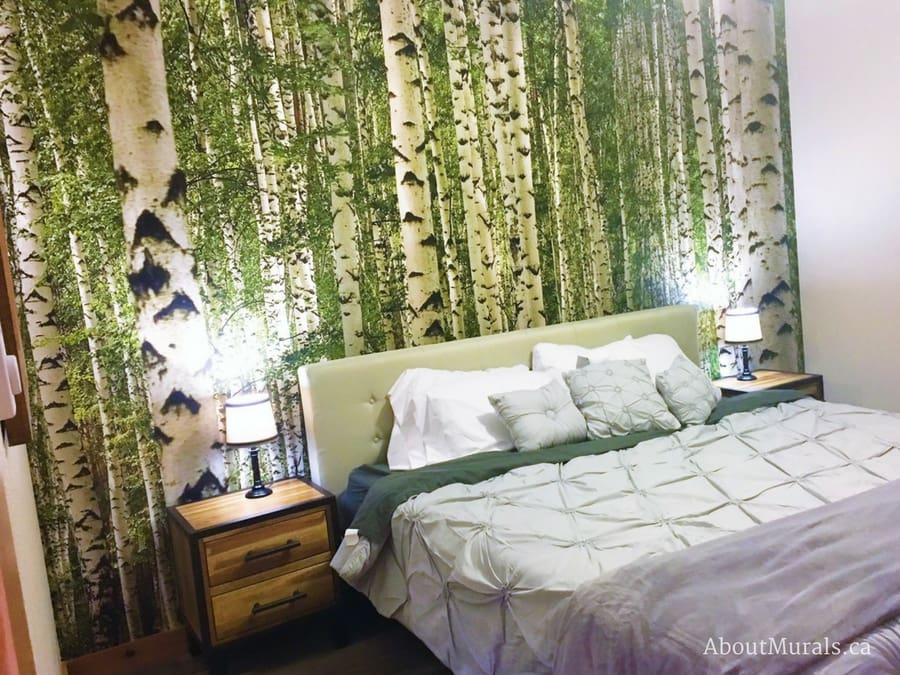 Birch Tree Forest Wall Mural Removable Wallpaper