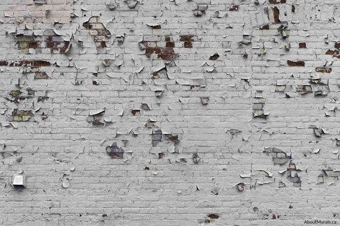 A peeling paint brick wallpaper gives an urban, industrial feeling. Sold by AboutMurals.ca