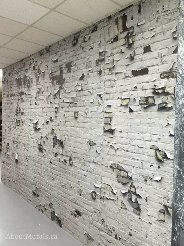 An industrial brick wallpaper with white peeling paint in an office. Sold by AboutMurals.ca