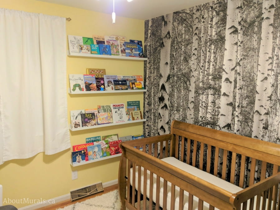 A black and white birch tree wallpaper (from AboutMurals.ca) creates a natural looking baby nursery along with its yellow walls and natural wood crib.