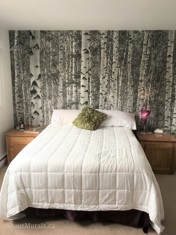A black and white birch tree wallpaper (from AboutMurals.ca) creates a neutral feature wall in a bedroom, ready for the white bed and hints of colour throughout the room.