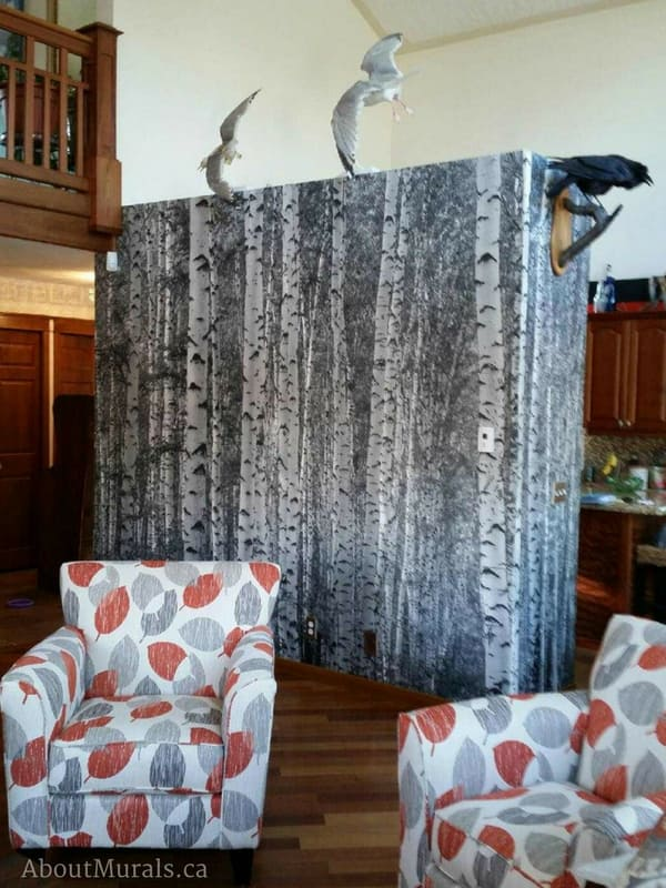 A birch tree wallpaper in black and white (from AboutMurals.ca) separates a living room from a kitchen.