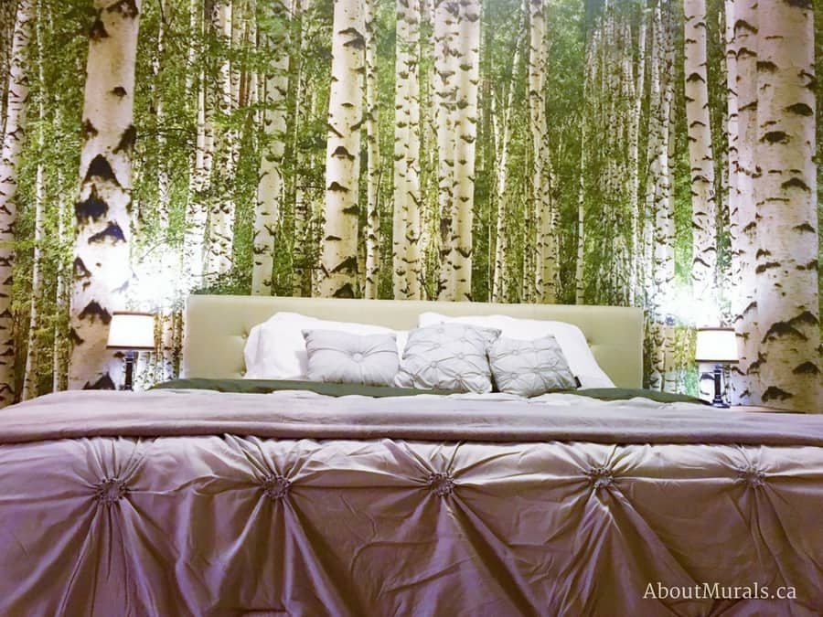 A green birch tree wallpaper in a bedroom from AboutMurals.ca