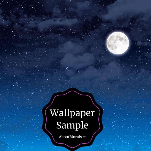 Night Sky Wallpaper Sample is a pre-pasted sample of a starry sky with a moon, sold by AboutMurals.ca