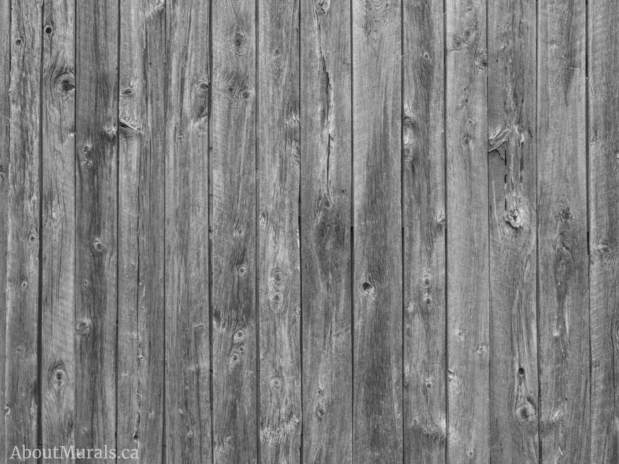 A wood look wallpaper in a grey colour sold by AboutMurals.ca